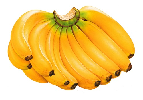 Banana perfect fruit