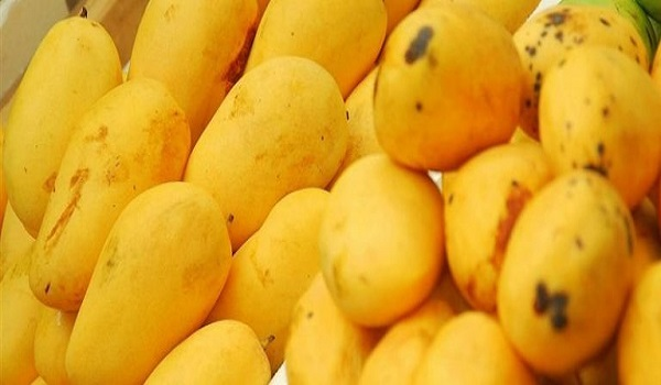 mango price each