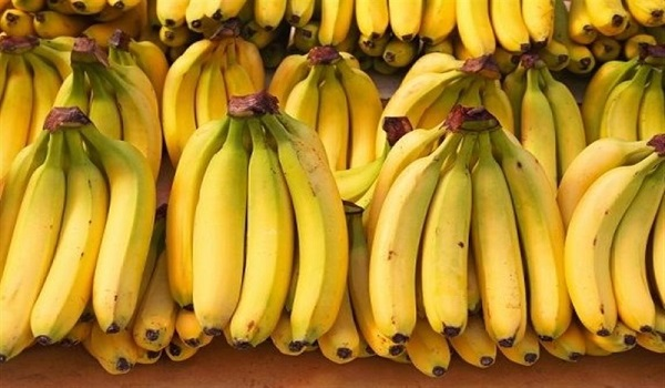 Banana market price today