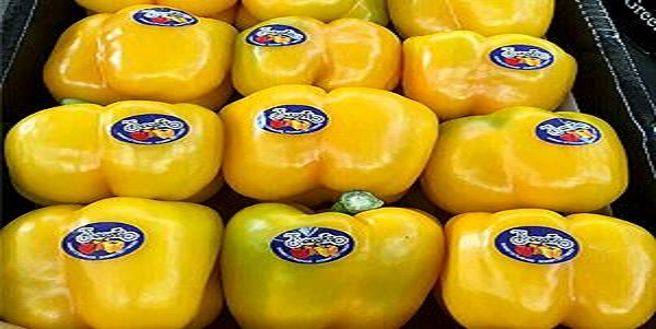 bell pepper price per pound
