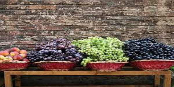 Grape market price