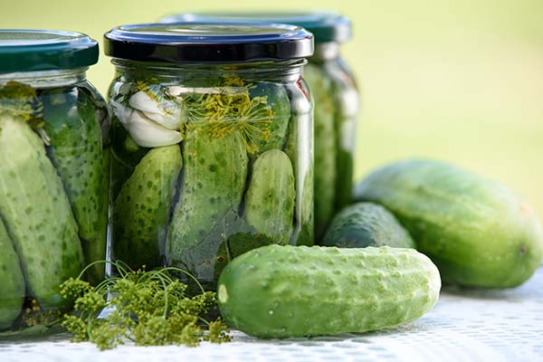 Buy cucumbers for pickling2