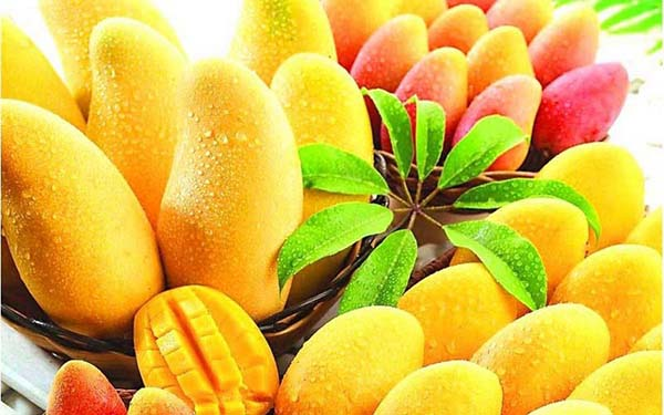 Buy mango from India
