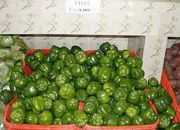 Green bell peppers on sale