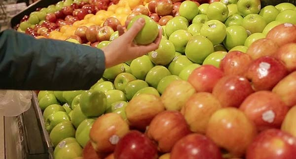 apple fruit importers in Russia - vegetable