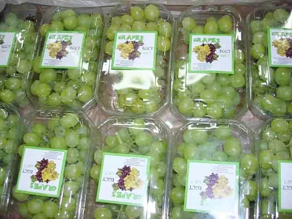 Grape prices near me