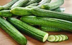 Cucumber market price