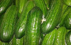cucumber exports by country