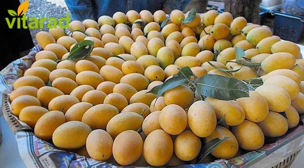 Imported mango prices