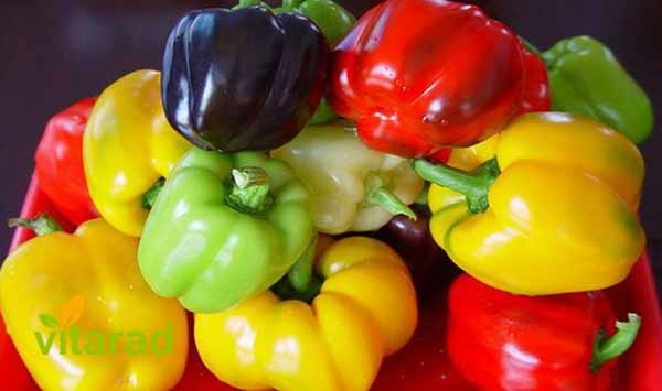 Bell pepper market price