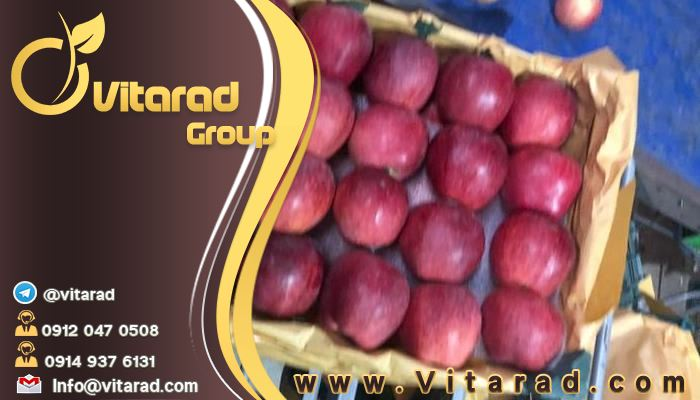 Red Delicious apple importing countries from Iran