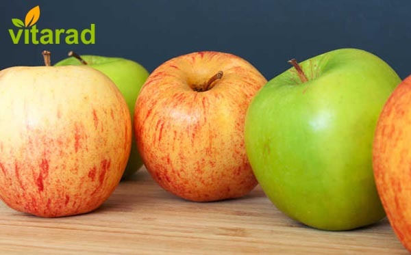 Red Delicious apple exporters