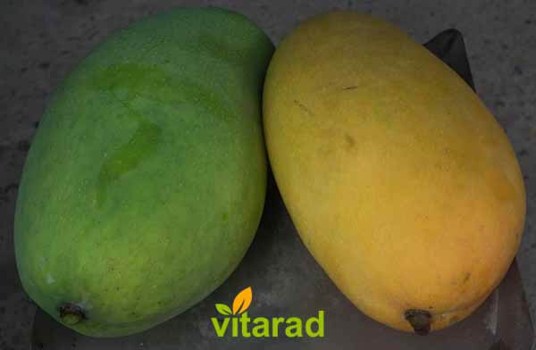 Price per ton of mangoes