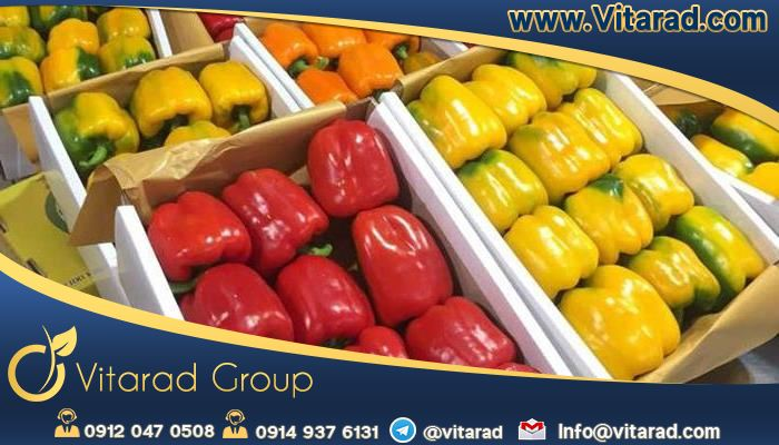 Quality packaging of yellow bell peppers