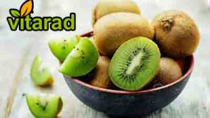 Kiwi fruit export