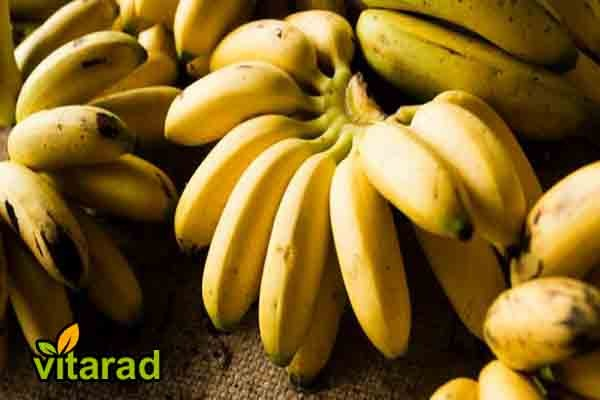 Banana import prices
