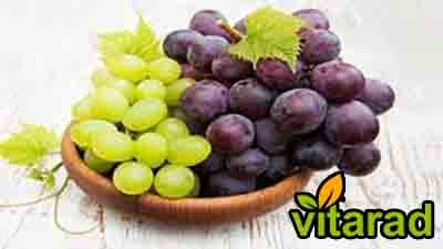grape cluster for