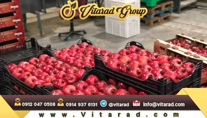 Export packing pomegranate from Iran