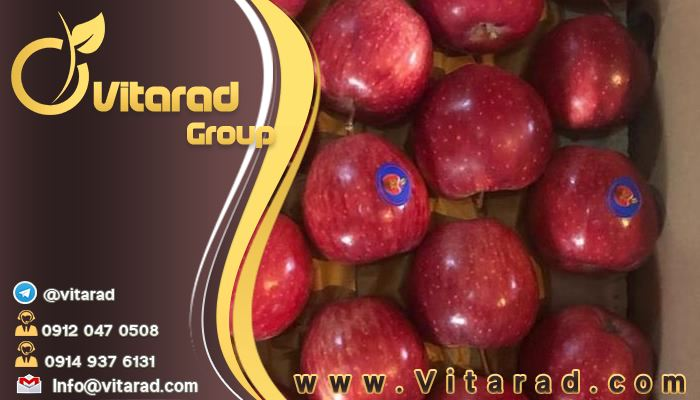 Technical Terms and Conditions for Exporting Red Apple to Iraq