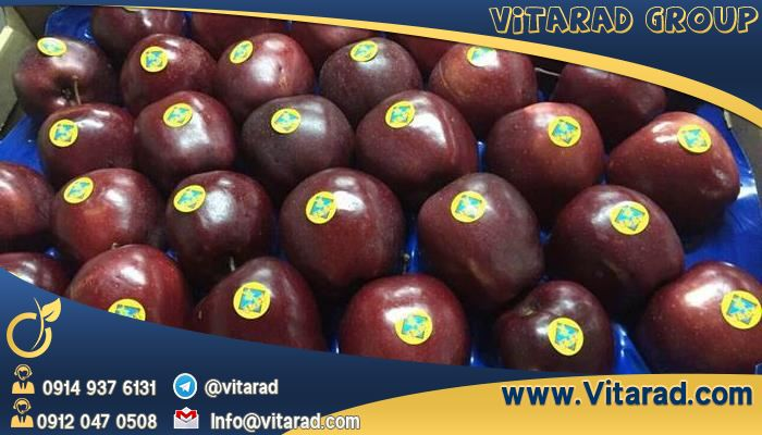 Red apple tree exports to Iraq