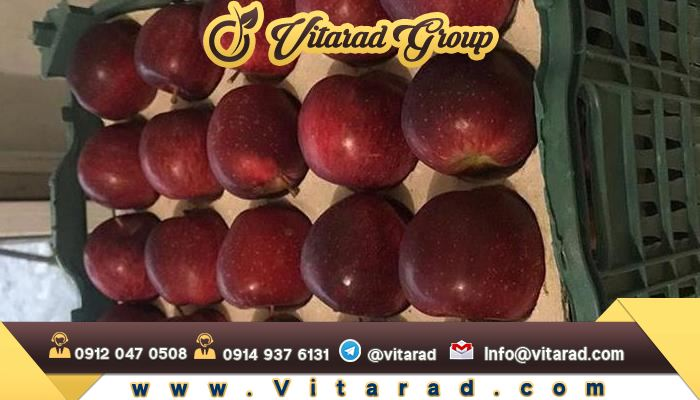 Most of Iran's apple tree exports to neighboring countries