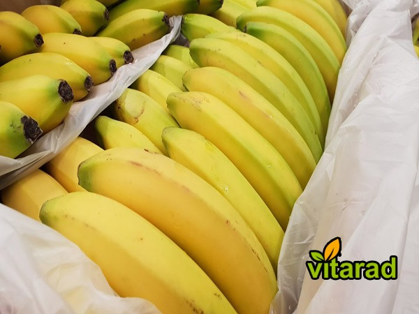Banana imports from India to Iran - vegetable
