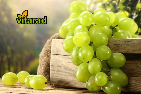 Buy seedless grapes