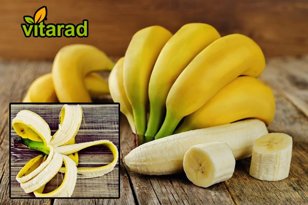 Cavendish banana for export