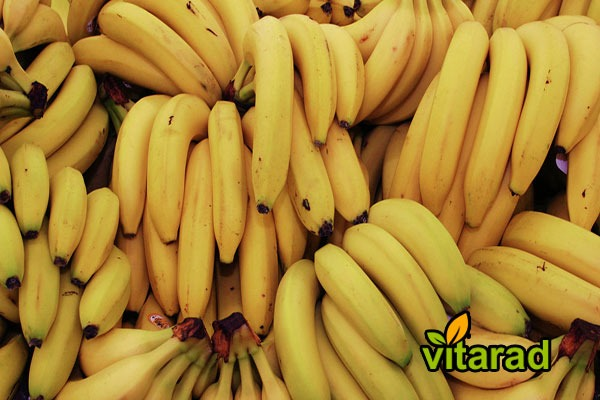 Export banana from Ecuador