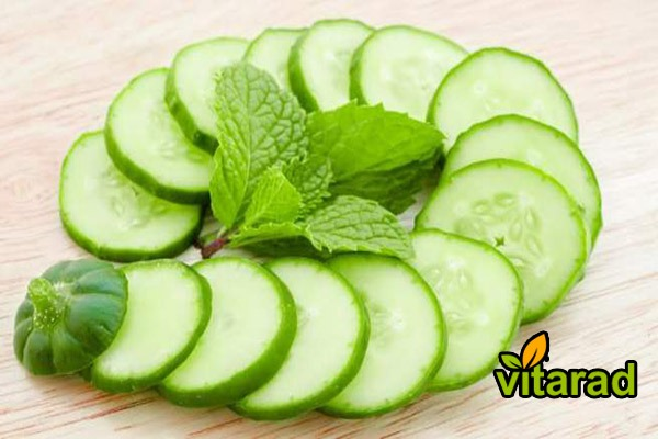 Best cucumber for pickles