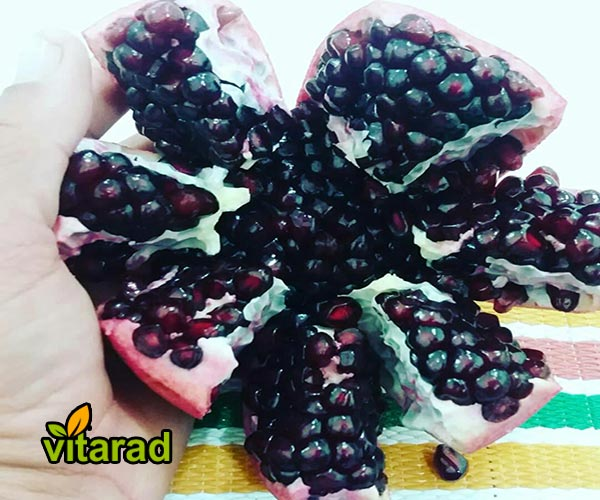 Export of black pomegranate