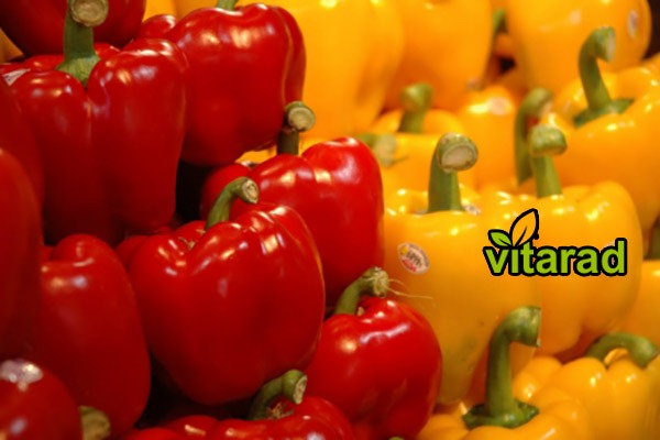 Yellow sweet peppers