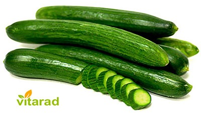 Exporting barbed cucumber