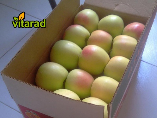 Green and yellow apple