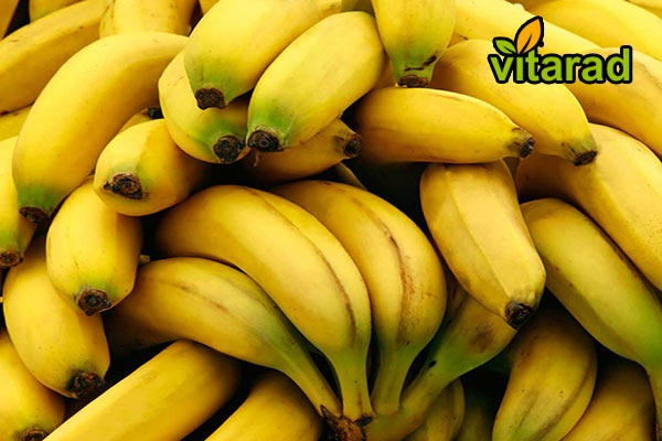 Indian banana export