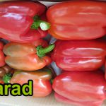 Red bell pepper production