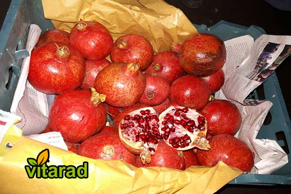 Sweet red pomegranate