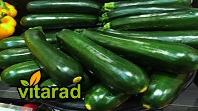 Cucumber importers in Russia - vegetable