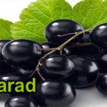 Exporting fresh table grapes