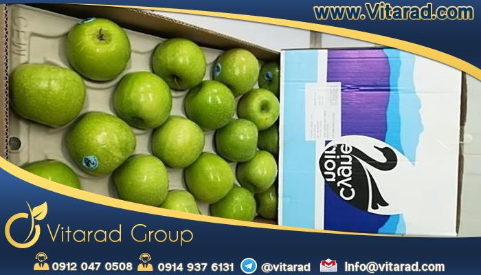 prices wholesale of Iranian fresh apple