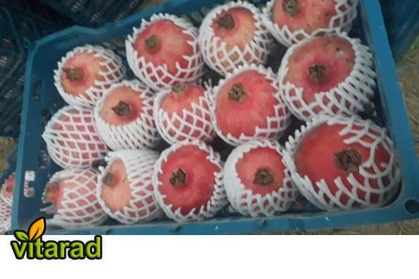 Wholesale red pomegranate online