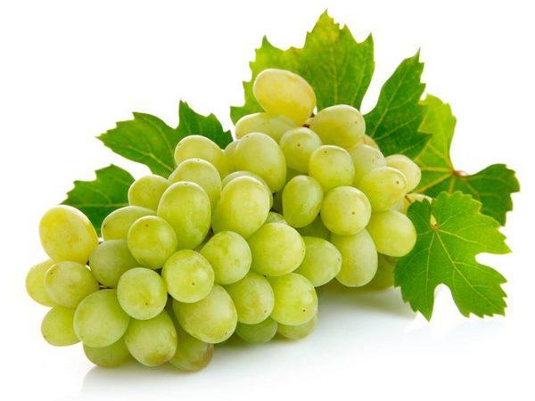 what is grape good for?