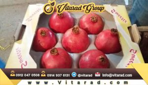 Wholesale price of Iranian pomegranate