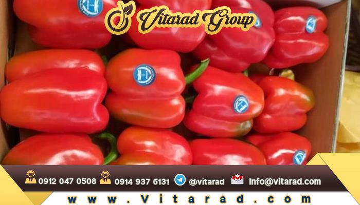 Red bell pepper from Iranian processor