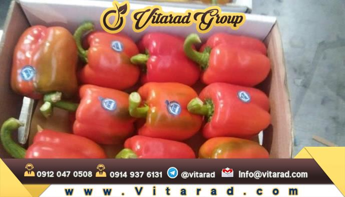 Wholesale quality red bell peppers