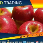 Iran apple fruit export from India